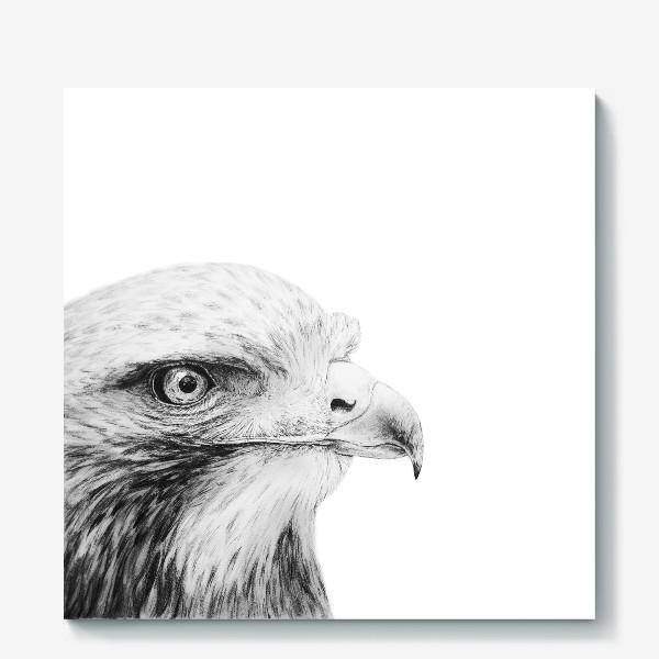 Холст «Орел - гордая и красивая птица!»