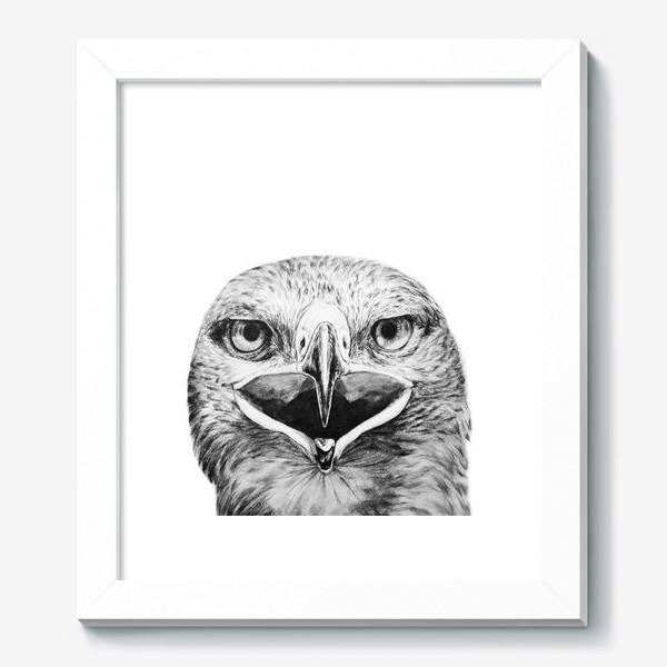 """Картина «Принт """" Хищная птица Орел""""»"""