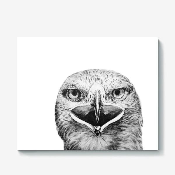 """Холст «Принт """" Хищная птица Орел""""»"""