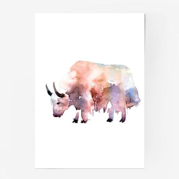 Постер «Тибетский бык. Акварельная серия животных»