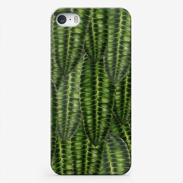 """Чехол iPhone «Ботаника """" Темно-зеленые листья""""»"""
