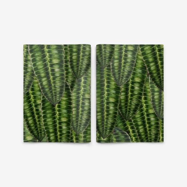 """Обложка для паспорта «Ботаника """" Темно-зеленые листья""""»"""