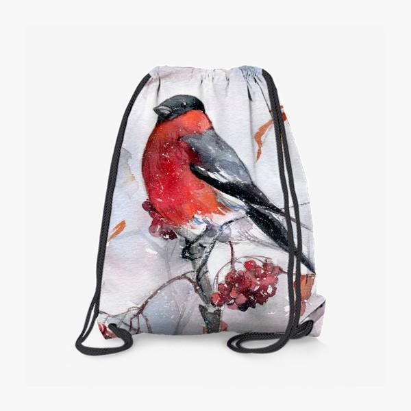 Рюкзак «Снегирь»