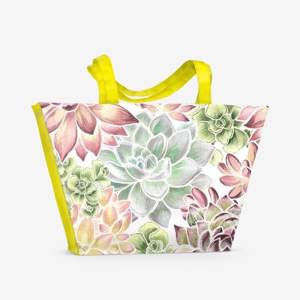 Пляжная сумка «Разноцветные суккуленты»