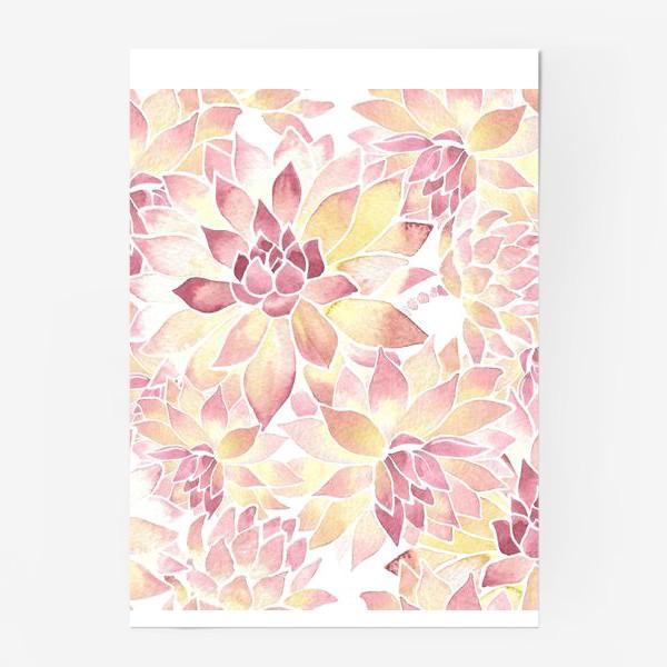 Постер «Розовые акварельные суккуленты»