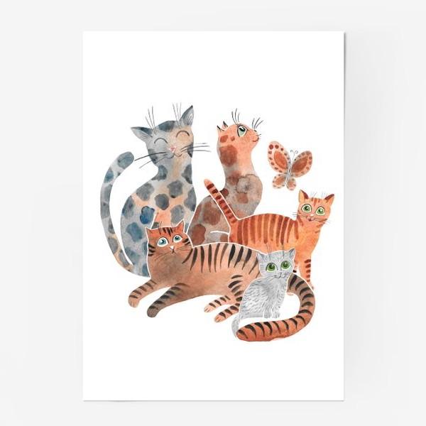 Постер «Милейшие коты»