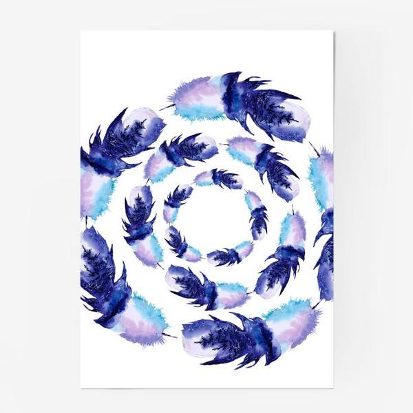 Постер «Перья зимние круги»