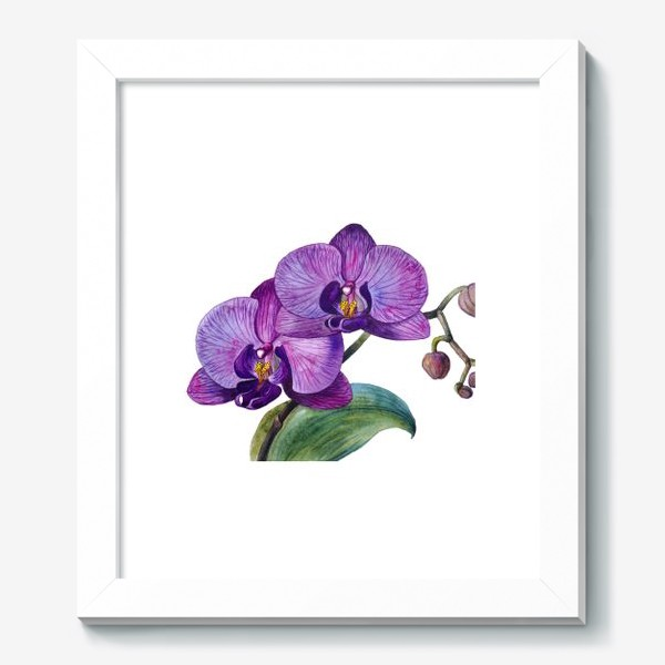 Картина «Орхидея»