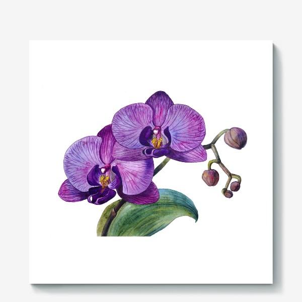 Холст «Орхидея»