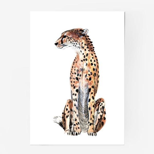 Постер «гепард»