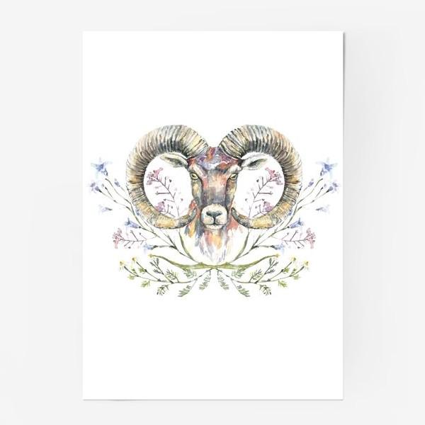 Постер «Акварельный портрет барана с букетом из полевых цветов»