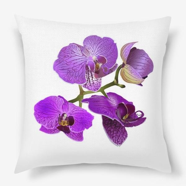 Подушка «Bush Pink Orchid»