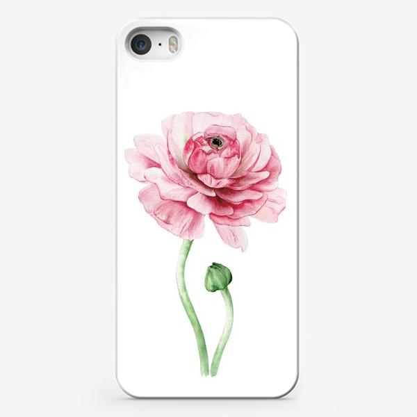 Чехол iPhone «Розовый ранункулюс »