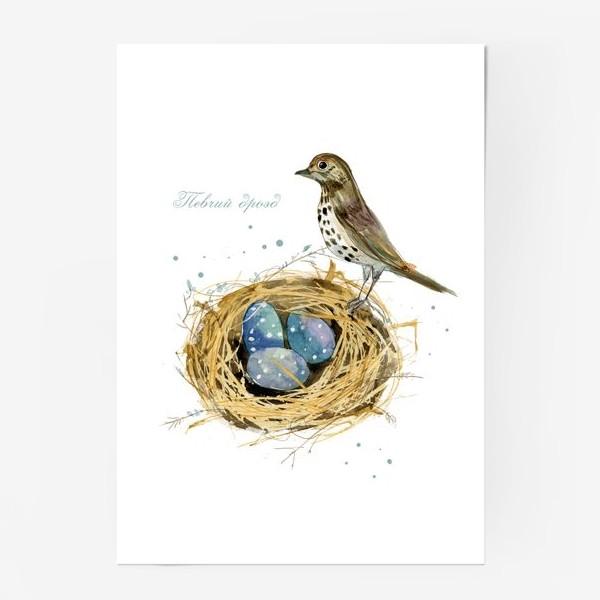 Постер «Певчий дрозд»