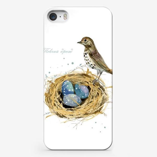 Чехол iPhone «Певчий дрозд»