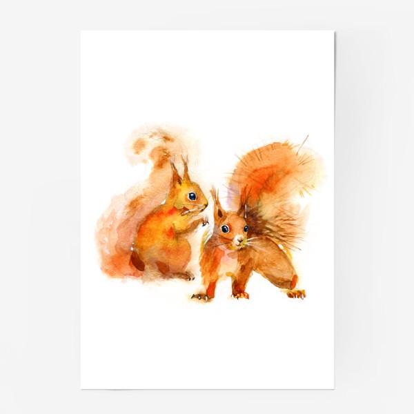 Постер «БЕЛКИ»
