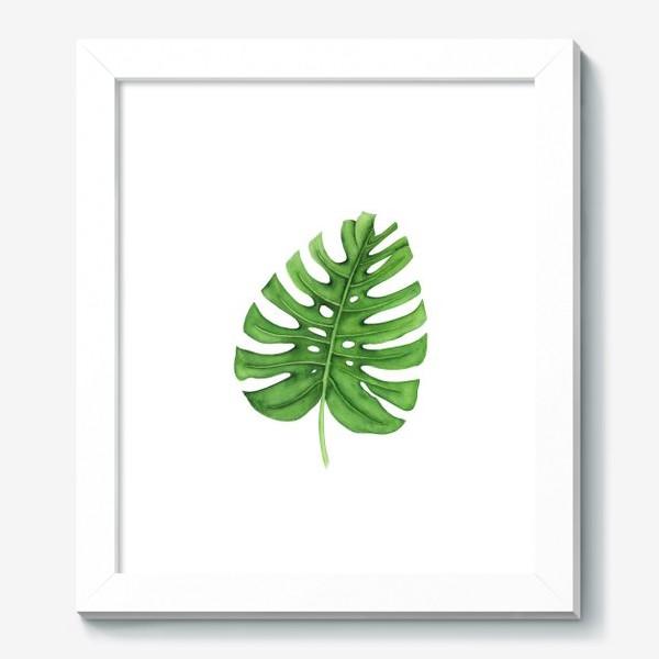 Картина «Тропики. Лист монстеры на белом фоне»