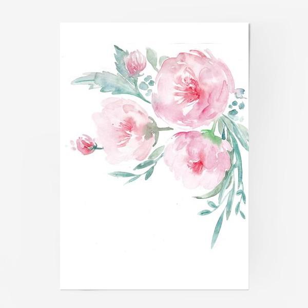 Постер «Нежно-розовые пионы»