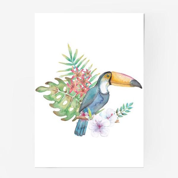 Постер «Тукан на ветке»