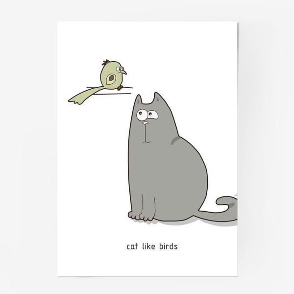 Постер «cat like birds»