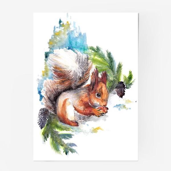 Постер «Белочка с орехом»