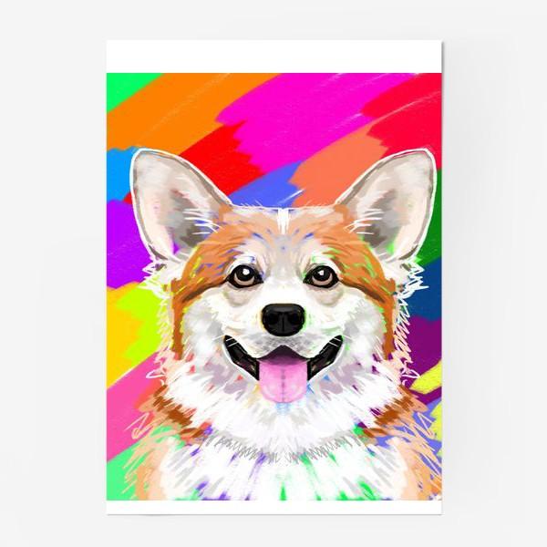 Постер «Пес корги »