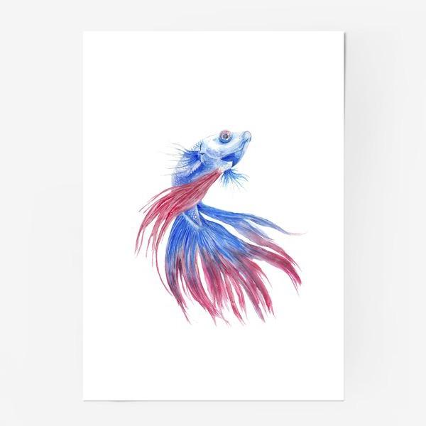 Постер «Рыба»