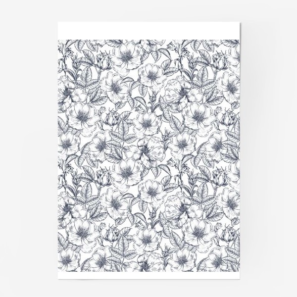 Постер «Шиповник. Графика. Цветы»