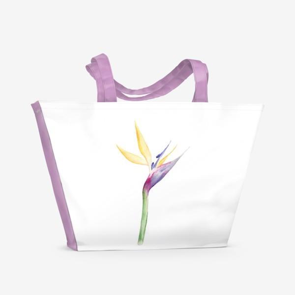 Пляжная сумка «Стрелеция»