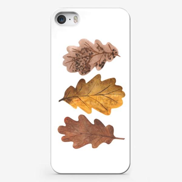 Чехол iPhone «Дубовые листочки»