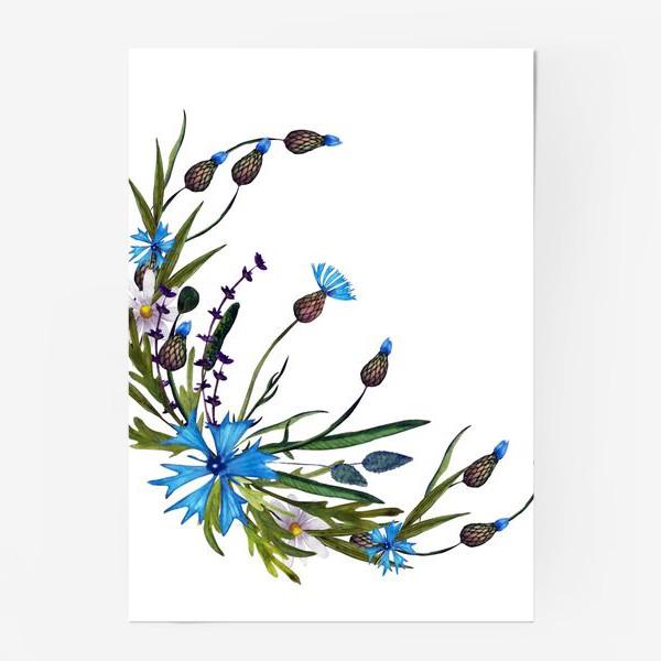 Постер «васильки и ромашки букет»