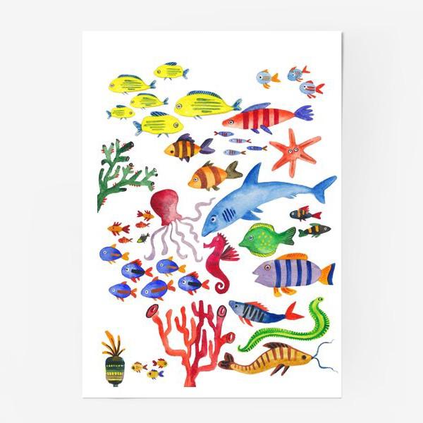 Постер «Рыбы. Подводный мир»