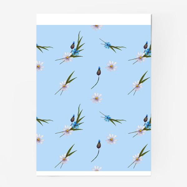 Постер «васильки и ромашки »