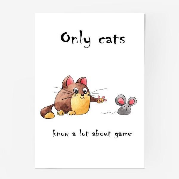 Постер «Кот и мышь»