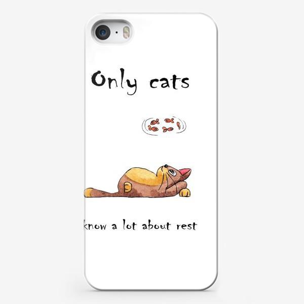 Чехол iPhone «Кот на отдыхе»