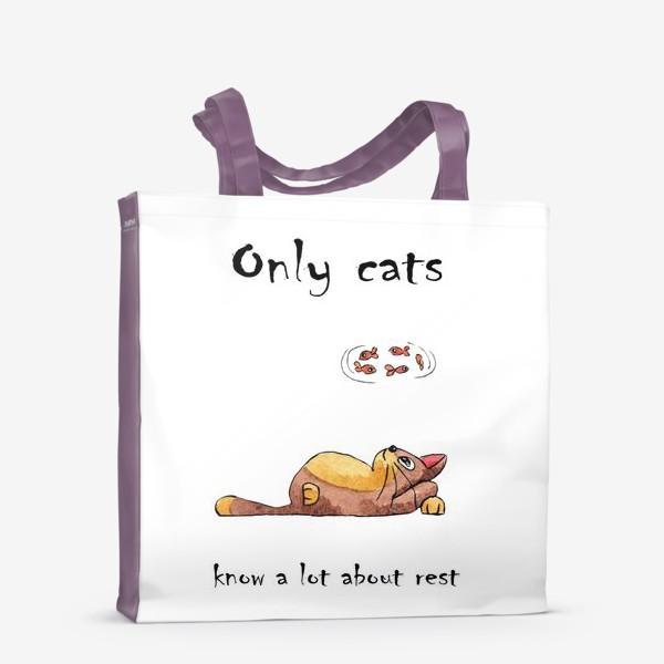 Сумка-шоппер «Кот на отдыхе»
