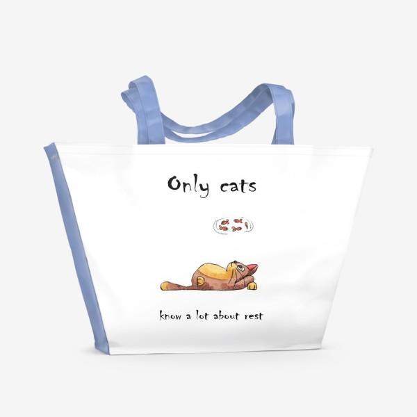 Пляжная сумка «Кот на отдыхе»