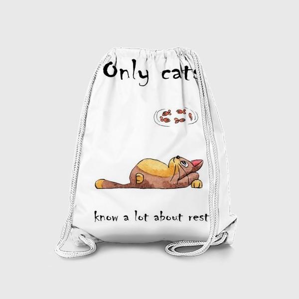 Рюкзак «Кот на отдыхе»