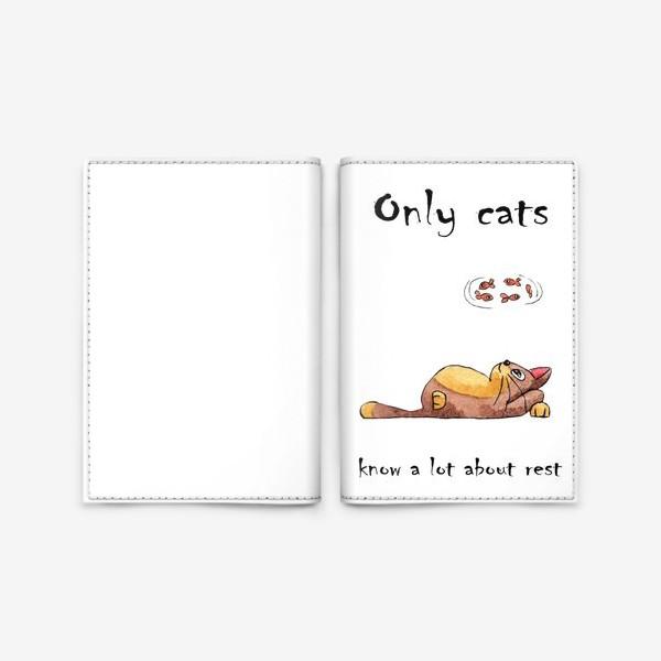 Обложка для паспорта «Кот на отдыхе»