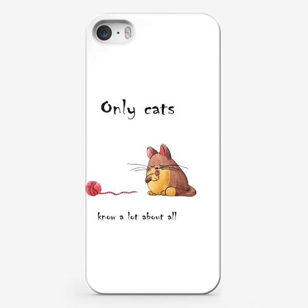 Чехол iPhone «Кот и философия жизни»