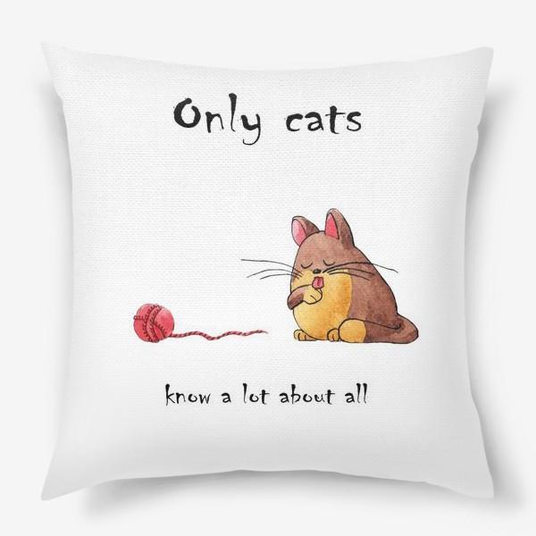 Подушка «Кот и философия жизни»