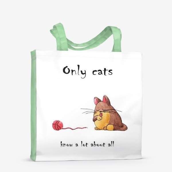 Сумка-шоппер «Кот и философия жизни»
