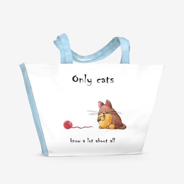 Пляжная сумка «Кот и философия жизни»