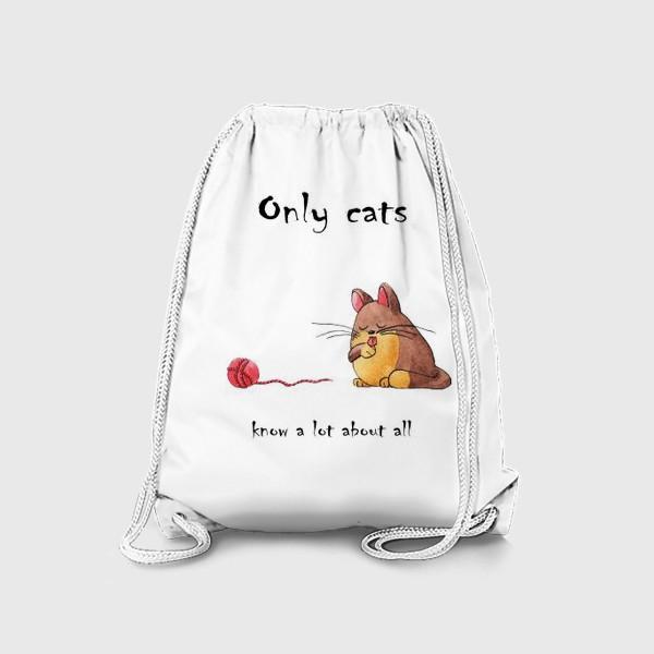 Рюкзак «Кот и философия жизни»