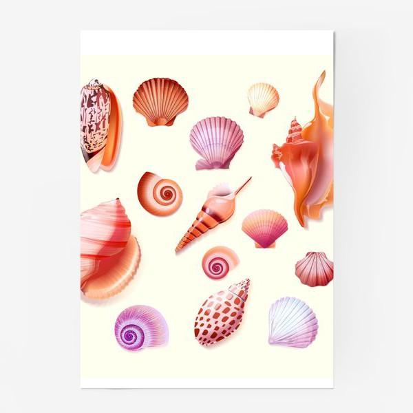 Постер «Sea Shells»