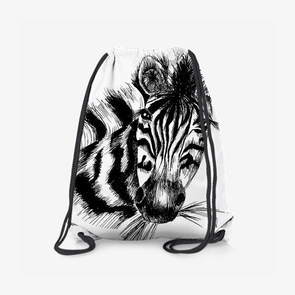 Рюкзак «Дикая зебра»