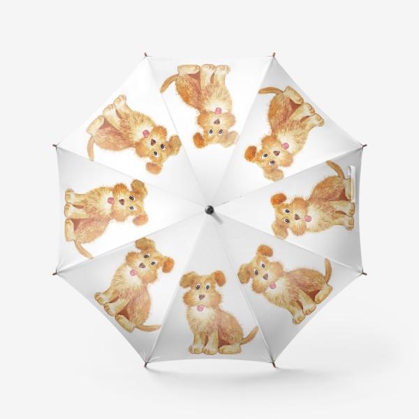 Зонт «собака»