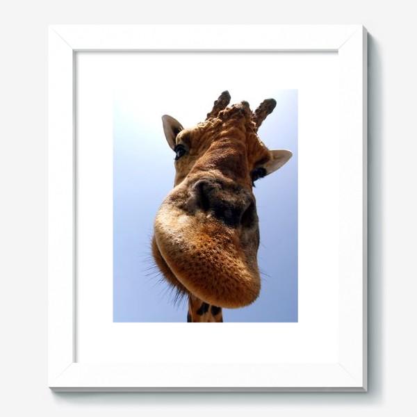 Картина «Жираф 2»