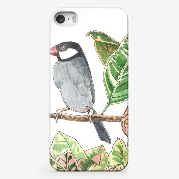 Чехол iPhone «Птичка на цветочной ветке»