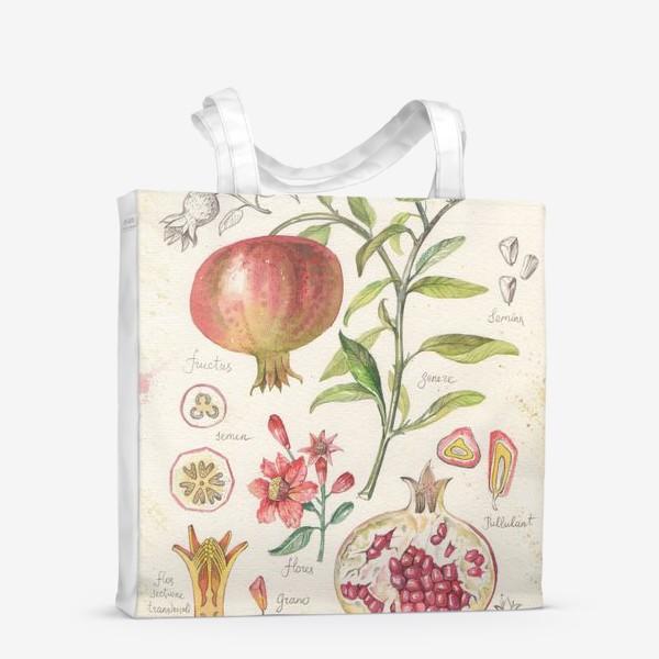 Сумка-шоппер «ботаническая иллюстрация гранат»